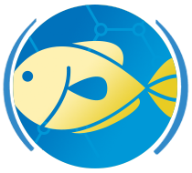 ICONS applications Seafood